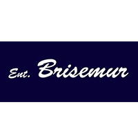 logo-brisemur